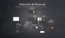 objetivo del sistema de selección de personal