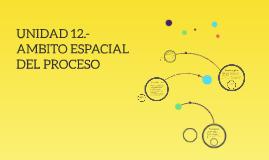 UNIDAD 12.- AMBITO ESPACIAL DEL PROCESO