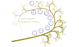 Structure of the Neuron