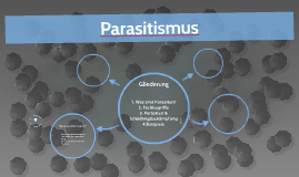 Parasitismus