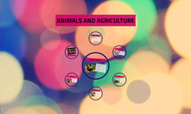 Animals and Agriculture