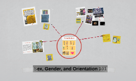 Sex, Gender, and Orientation 101