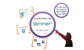 Yammer, wat  kun je ermee