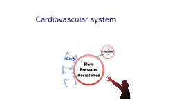 Physiology 210 Cardiovascular