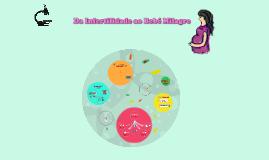 Da Infertilidade ao Bebé Milagre