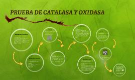 PRUEBA DE CATALASA Y OXIDASA