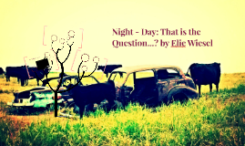 Night - Day: That is the Question...? by Elie Wiesel