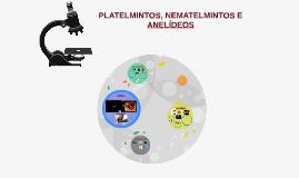 Copy of PLATELMINTOS, NEMATELMINTOS E ANELÍDEOS