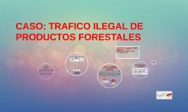 CASO: TRAFICO ILEGAL DE PRODUCTOS FORESTALES