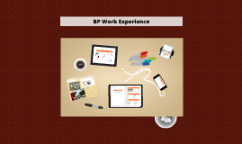 BP Work Experience