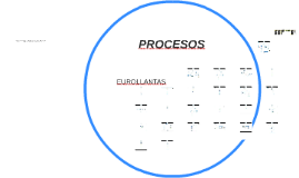 PROCESOS EUROLLANTAS