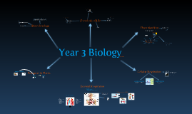 Year 3 Biology Concept Map 2011 (Semester 1)