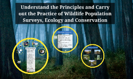 Wildlife Conservation and Ecology
