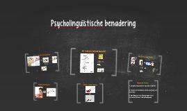 Psycholinguïstische benadering
