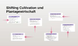 Shifting Cultivation und Plantagewirtschaft