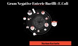 Gram Negative Enteric Bacilli: E.Coli