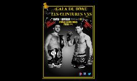 Gala de boxe Les Ceintures VXS