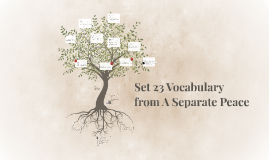 Set 23 Vocabulary