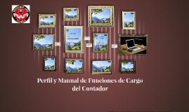 Copy of Perfil y Manual de Funciones de Cargo del Contador