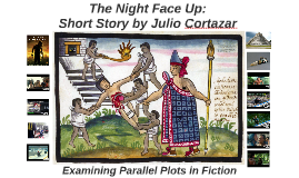 The Night Face Up: Examining Parallel Plots