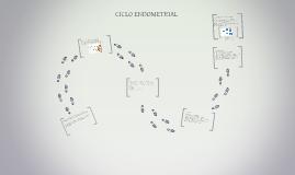 Copy of Ciclo endometrial