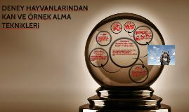 Copy of DENEY HAYVANLARINDAN KAN VE ÖRNEK ALMA TEKNiKLERi