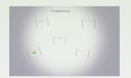 Nitrogen Journey