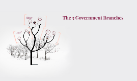 The 3 Gobernment Branches