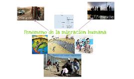 Copy of Fenómeno de la migración  humana