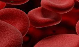 Copy of Hematology and Immunology