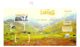 Proyecto Lomas Unalm - UCV