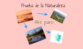 Prueba de la  Naturaleza bella y creativa