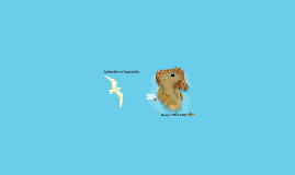 Dieren in Australië