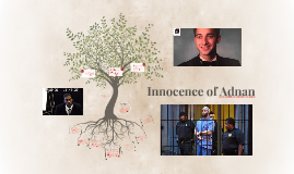 Innocence of Adnan