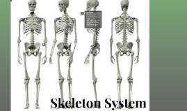 Skelton System