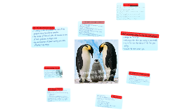 Outdoor Ed- Decrease of Number of Penguins