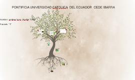 PONTIFICIA UNIVERSIDAD CATOLICA  DEL ECUADOR  CEDE IBARRA