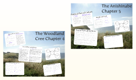 The Woodland Cree Chapter 4