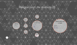 Copy of Religion and Life: Animals (3) (and Alevel)