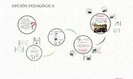 OPCION PEDAGOGICA