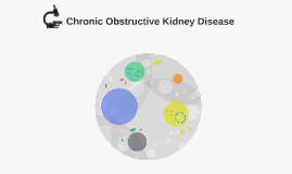 Chronic Obstructive Kidney Disease