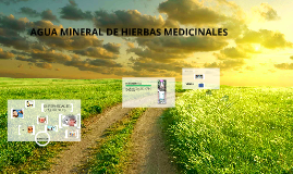 E-business Agua mineral de hierbas medicinales