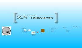 SO4 Telomeren