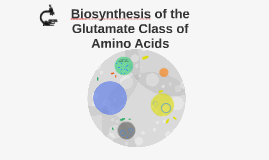 Biosynthesis of the Glutamate Class of Amino Acids