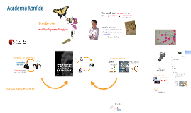Academia Konfide - Oficial