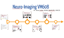 NeuroImaging VM608