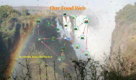 Our Food Web