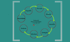 Redes de aprendizagem - Hub Escola