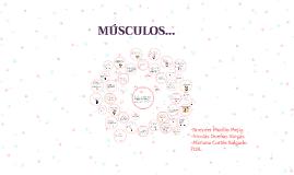 Copy of MÚSCULOS...