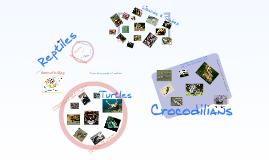 BHMS-Reptiles